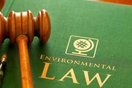Ban hành Kế hoạch triển khai thi hành Luật Bảo vệ môi trường tại Quyết định số 343/QĐ-TTg