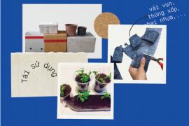 Sống xanh cuối tuần: hướng dẫn trồng hoa đậu biếc đơn giản tại nhà!