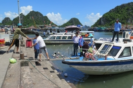 Lo ngại gia tăng ô nhiễm môi trường từ phương tiện thủy