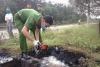 Phó Thủ tướng yêu cầu các tỉnh, thành phố thực hiện nghiêm túc Chỉ thị cấp bách về môi trường số 25/CT-TTg