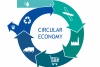 Building a circulating economy in the packaging industry