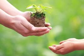 Tập huấn về bảo vệ môi trường trên địa bàn tỉnh Cà Mau cho các cơ sở sản xuất, kinh doanh, dịch vụ, y tế