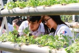 Ngành Kĩ thuật môi trường: Nhân lực cuộc sống xanh